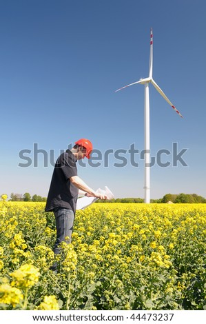Renewable energy constructor standing on yellow field of rapeseed, behind blue sky with windmill.