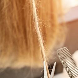 Repair long hair procedure. Haircut at salon. Woman hairstyle. Master hand with scissors. Adult female person. Closeup view. Studio equipment. Lady preparation. Blonde split