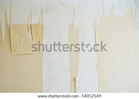 Repair. Removal of wallpaper.