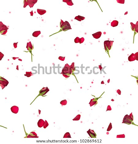 Repeatable flying, studio photographed red roses with petals, on a back light, and bokeh particles, isolated on white