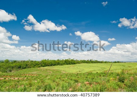 Replacement of native forest for sugarcane and eucalyptus in the south of Brazil. Deforestation is the main cause of emissions of greenhouse gases in Brazil.
