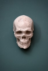 Replica of a human skull hanging on a teal colored wall conceptual of Halloween, death and morbidity with copyspace below