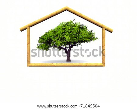 representation of the concept of environmental and economic home