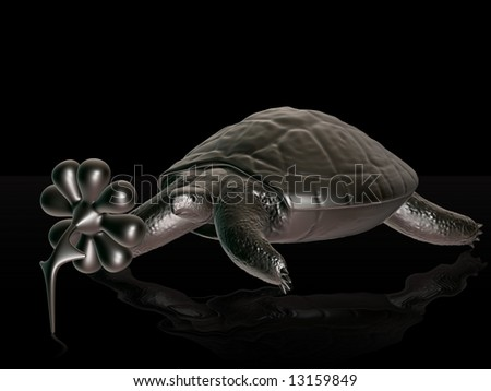 Reptile turtle, desert animal