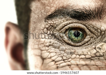 Reptilian humanoid. Reptiloid as science fiction character or reptilian conspiracy theory concept.  Stock fotó ©