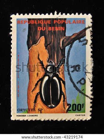 REPUBLIC OF BENIN - CIRCA 1980s: A Stamp printed in the REPUBLIC OF BENIN shows black beetle bark,  circa 1980s.
