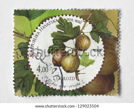 REPUBLIC OF CROATIA, CIRCA 2010 - stamp depicting gooseberry (ribes uva-crispa) released in the independent Republic of Croatia, circa 2010