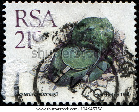 REPUBLIC OF SOUTH AFRICA - CIRCA 1990: A stamp printed in Republic of South Africa shows dwarf aloe-like, succulent-leaved stone plant - Gasteria armstrongii, circa 1990 - stock photo