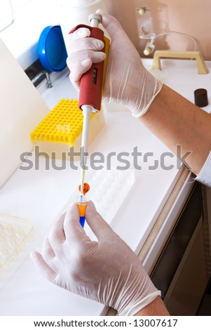 Research in laboratory. Scientist working with samples.