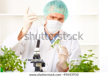 Researcher holding up a GMO plant. Genetically modified organism or GEO here transgenic plant is an plant whose genetic material has been altered using genetic engineering techniques