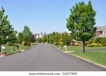 Residential District Suburban Neighborhood Street in Spring