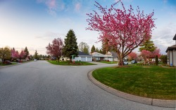 Residential Suburban Neighborhood in the City during a vibrant springtime sunset. Taken in Fraser Heights, Surrey, Vancouver, BC, Canada. Panorama, Wide Angle