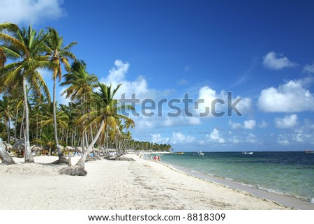 Resort beach, Punta Cana, Dominican Republic