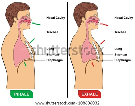 how to use betadine as an inhalation