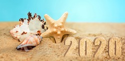 Rest 2020.Sea star and colorful shells on coastline.Summer beach.Vacation memories from the beach, sea fish and shell.Summer beach background travel concept.Banner.Copy space for text.