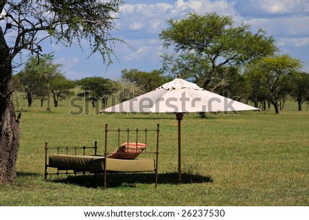 Resting Place in the African Savannah