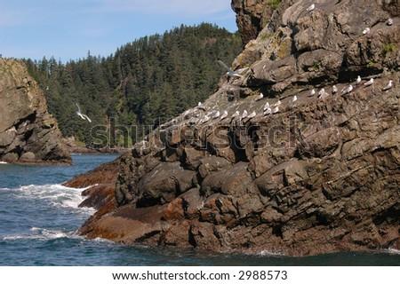 Resurrection Bay - stock photo