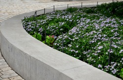 retaining seat wall made of pure cast concrete blooms purple flowers behind it the wall is bordered by metal fences with black ropes against the entrance to the flower bed