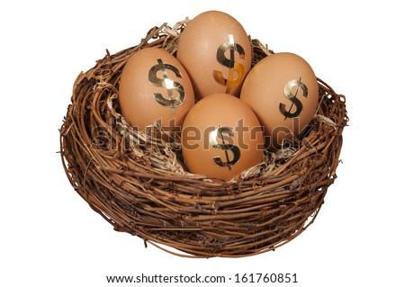 Retirement Nest Egg isolated on white background