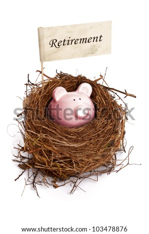Retirement nest egg, piggy bank in bird's nest