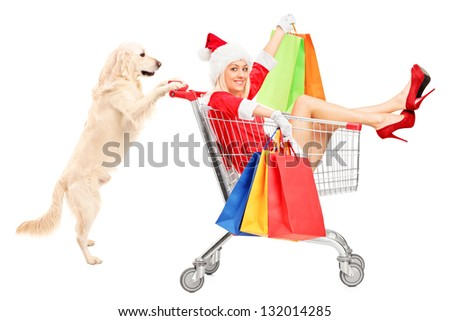 Retriever dog pushing a woman wearing Santa Claus costume in a shopping cart isolated on white background