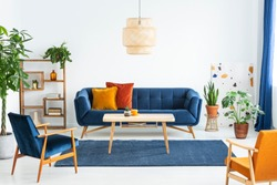 Retro armchairs with wooden frame and colorful pillows on a navy blue sofa in a vibrant living room interior with green plants. Real photo.