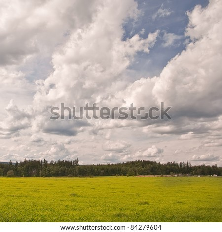 Retro colors shot - Green meadow and sky with many clouds