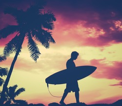 Retro Filtered Silhouette Of A Surfer Carrying His Surfboard WIth Palm Tree