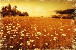 Retro image of landscape.