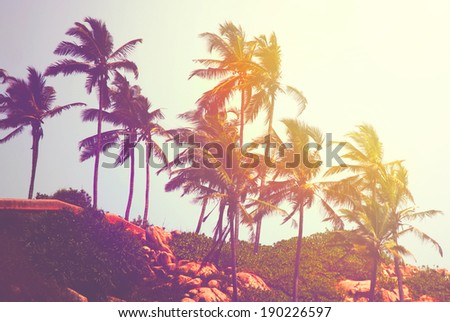 Retro photo of tropical beach, India