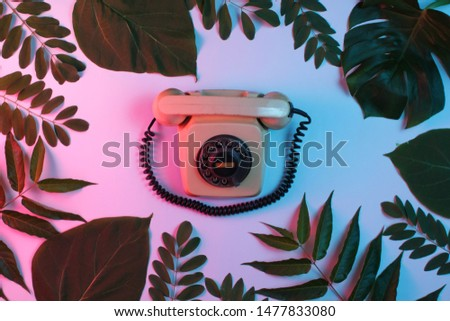 Retro style background. Retro rotary phone among green leaves on background with gradient neon blue pink light. Top view #1477833080