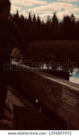 Retro style curvy silhouette of a woman, wearing a vintage dress, leaning on a wooden bridge railing overlooking a lake ,surrounded by dense forests. Dark moody photograph.