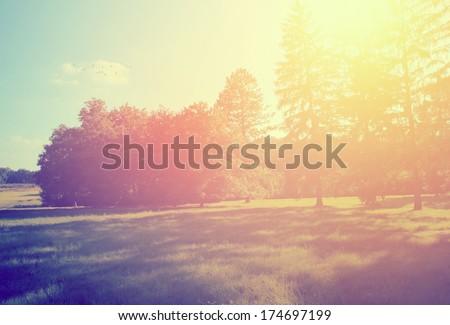 Shutterstock Retro summer scene