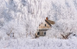 Retro Winter House. Christmas Landscape In Pink Tones With Old Fairy Tale House, Surrounded Hoarfrosted Trees. Rural Landscape With Scenic Ancient Russian Old Wooden Hut. Izborsk, Pskov Region, Russia