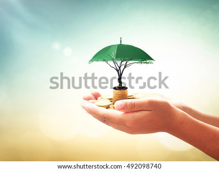 Return on investment concept: Human hands holding stacks of golden coins and green umbrella tree on blurred nature background
