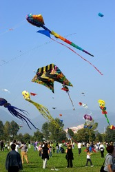 Rezzato (Bs),Lombardy,Italy,4 October 2009, Kite festival,a gathering of kite enthusiast