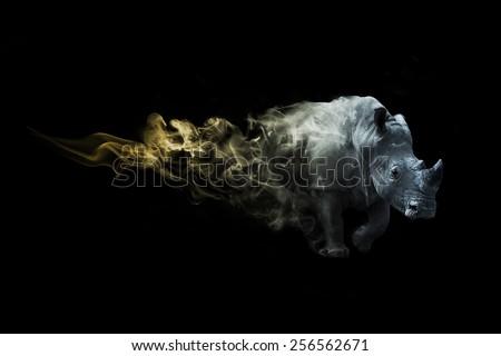 Rhino african safari. animal kingdom. amazing image of a rhino. wildlife picture. great tattoo. beautiful color, zoo