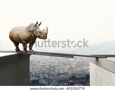 rhino want to walk on wood beam danger concept