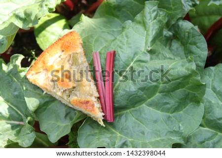 rhubarb cake on a rhubarb leaf