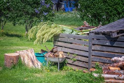 Rhubarb flowers cut and lying at top of wooden compost box. Cut tree stub, green plastic basket, garden cart with firewood