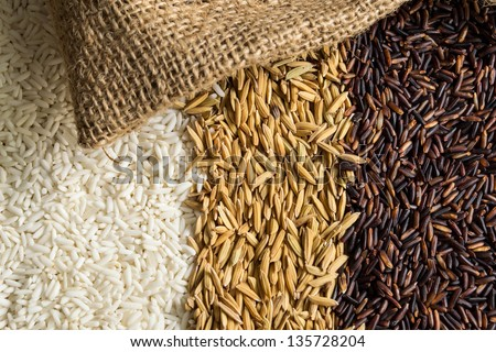 rice and paddy and brown rice with bag