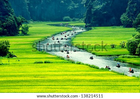 Rice field and river NinhBinh vietnam landscapes