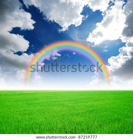 Rice field green grass blue sky cloud cloudy landscape background rainbow