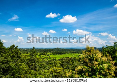 Rice field in Chiangmai province, Thailand. #1193810956