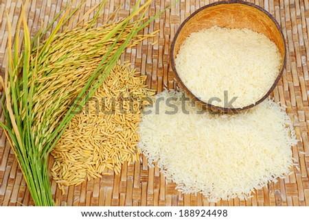 Rice field on bamboo background. ストックフォト ©
