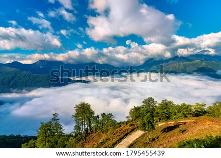 Rice field terraces. Mountain view in the clouds. Sapa, Lao Cai Province, north-west Vietnam Zdjęcia stock ©