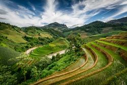 Rice fields on terrace of Mu Cang Chai, Yen Bai, Vietnam