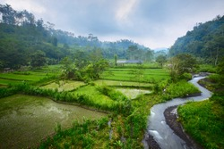 Rice fields with river and mountains. Bali island