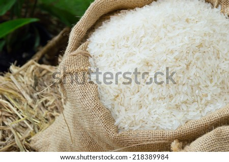 rice in sack on rice tube background in local market