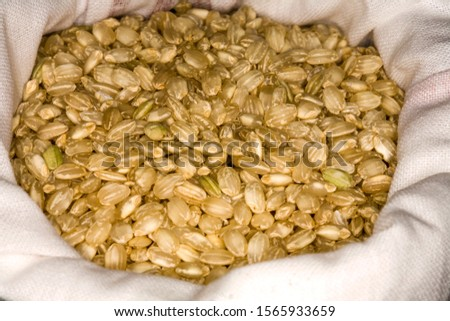 Rice is a cereal considered one of the basic foods, widely used both in Mediterranean cuisine and in Asian cuisine.